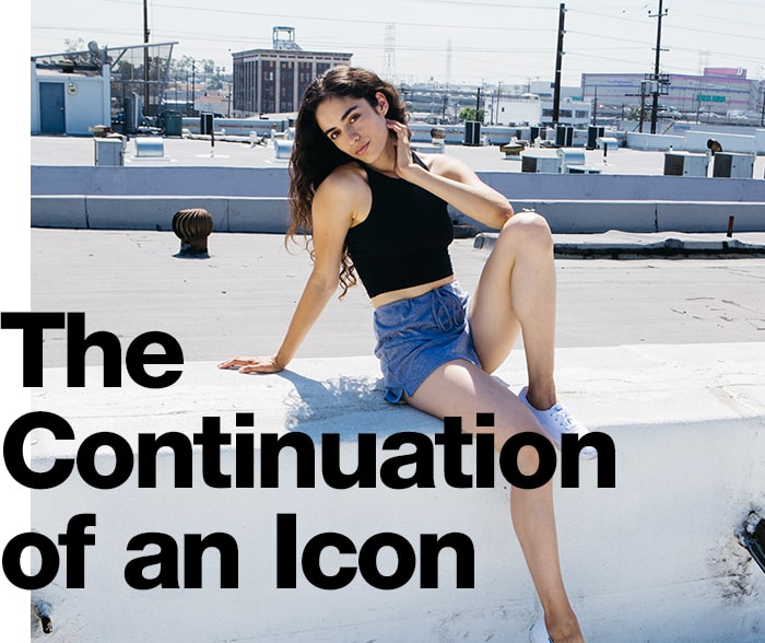 American Apparel Facts , The Continuation of an Icon