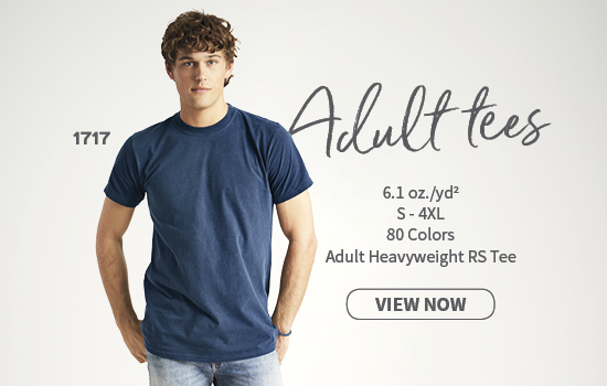 View now 4099 Adult V-Neck Tee